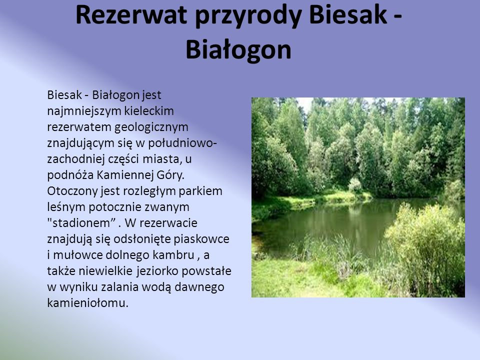 Rezerwat przyrody Biesak -Białogon