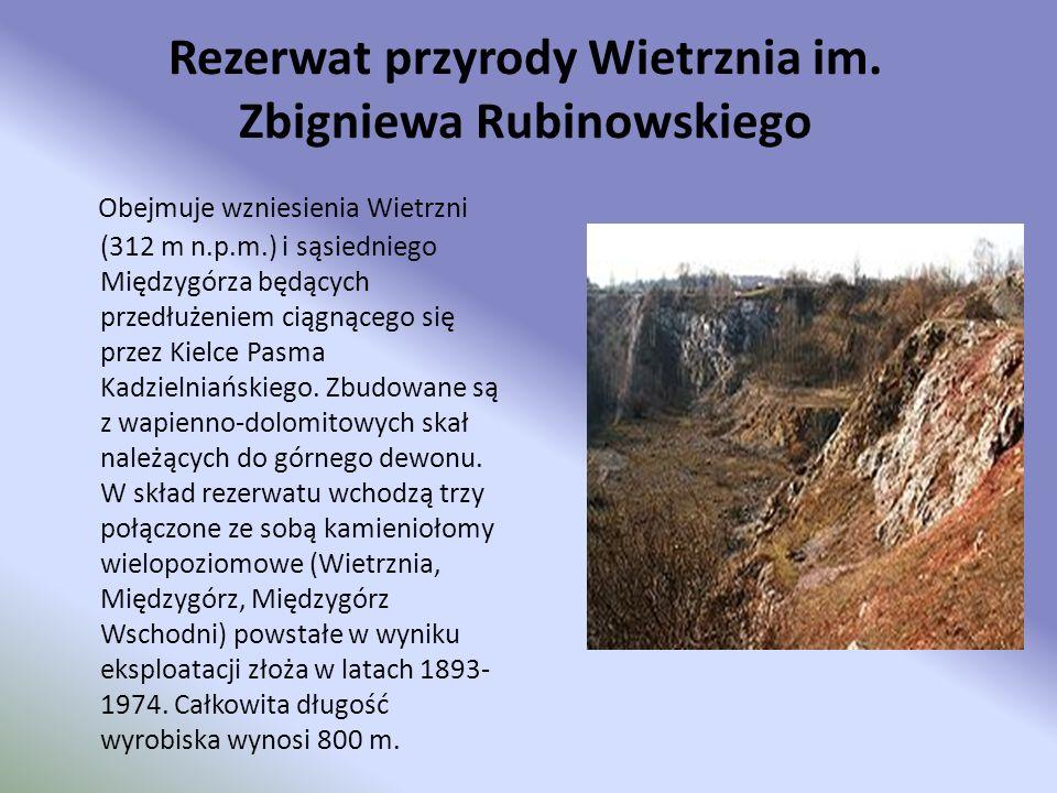 Rezerwat przyrody Wietrznia im. Zbigniewa Rubinowskiego