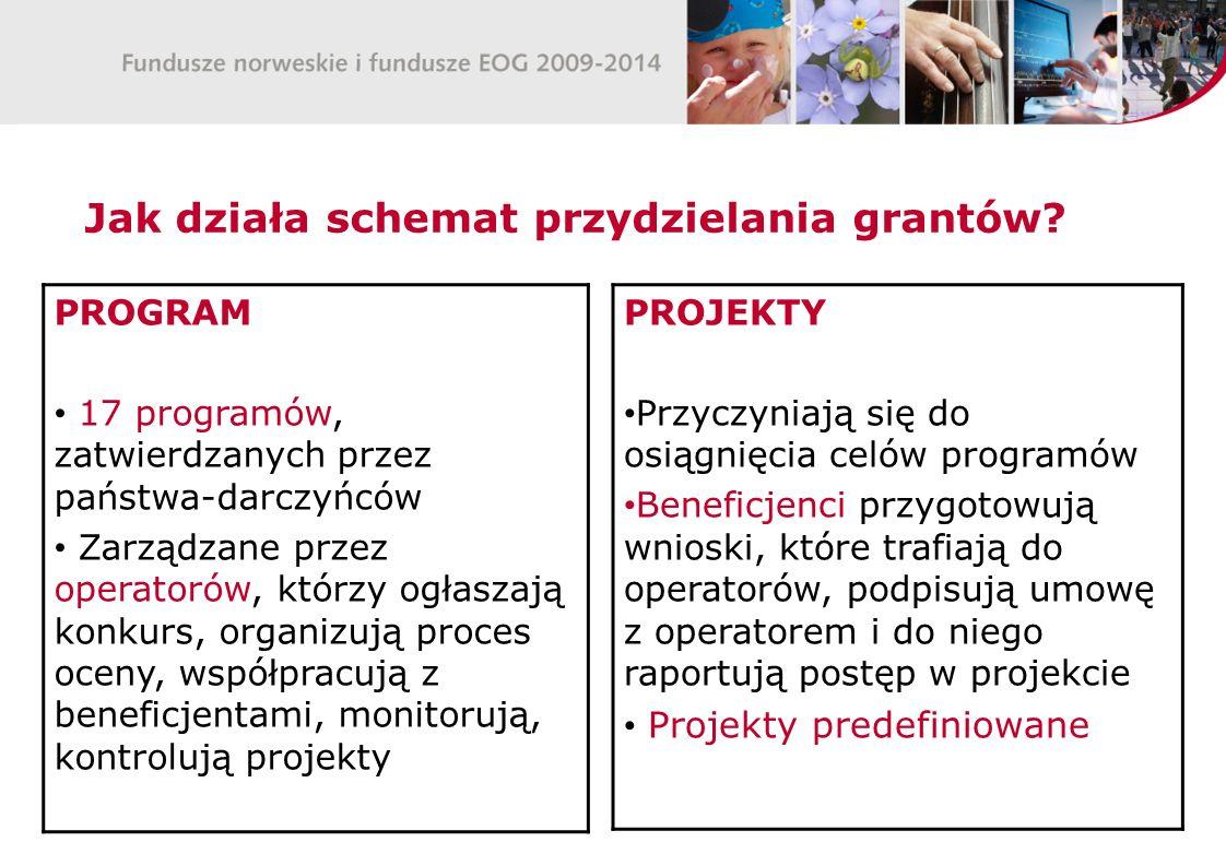Jak działa schemat przydzielania grantów