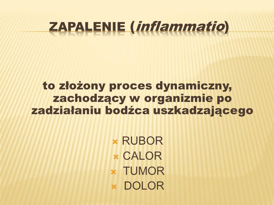 Zapalenie (inflammatio)