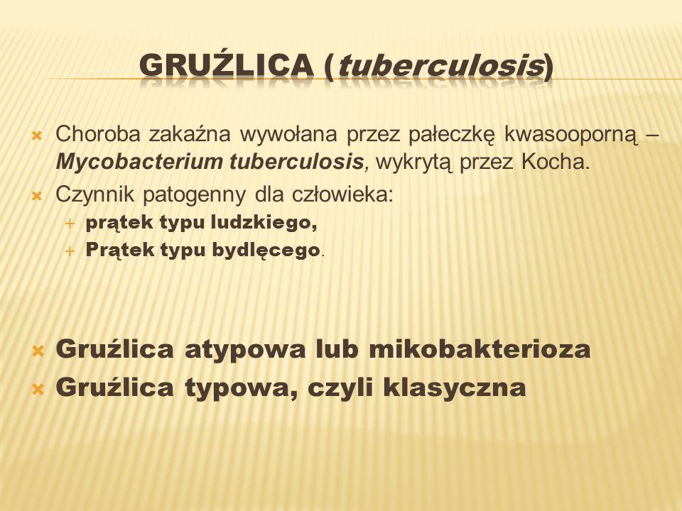 Gruźlica (tuberculosis)