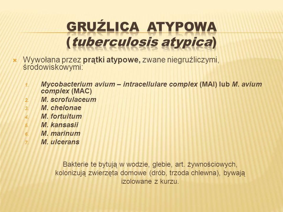 GRUŹLICA ATYPOWA (tuberculosis atypica)