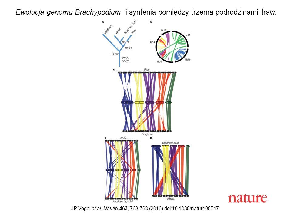 JP Vogel et al. Nature 463, 763-768 (2010) doi:10.1038/nature08747