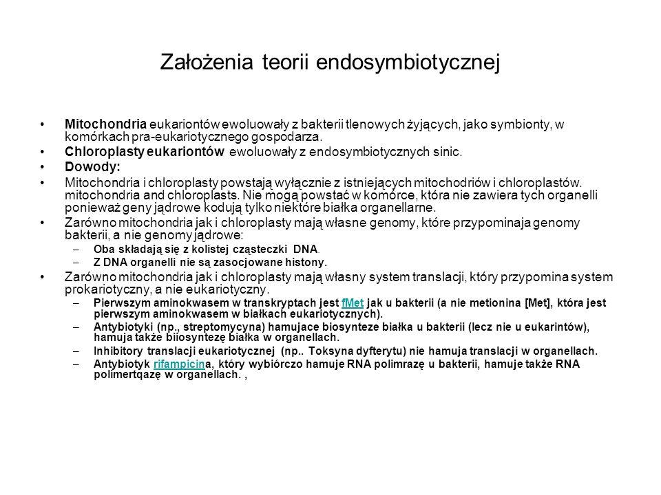Założenia teorii endosymbiotycznej