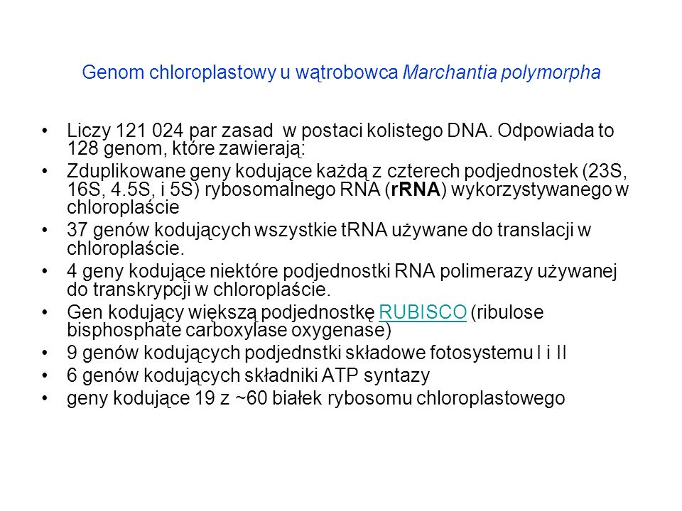 Genom chloroplastowy u wątrobowca Marchantia polymorpha