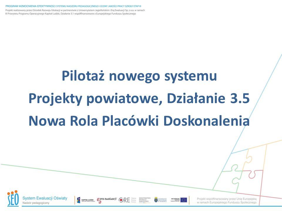 Pilotaż nowego systemu Projekty powiatowe, Działanie 3