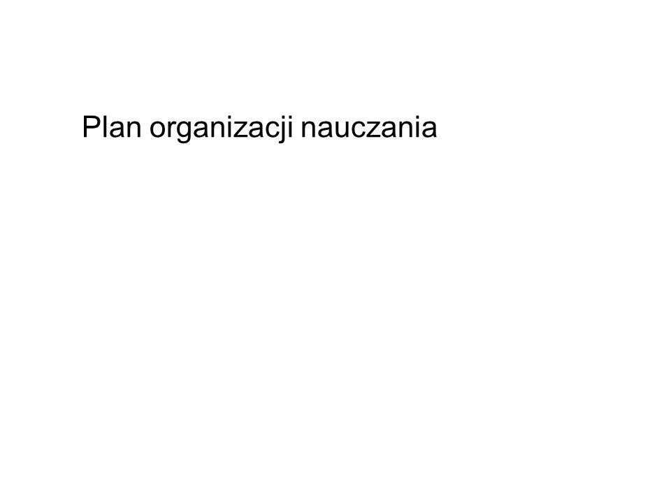Plan organizacji nauczania