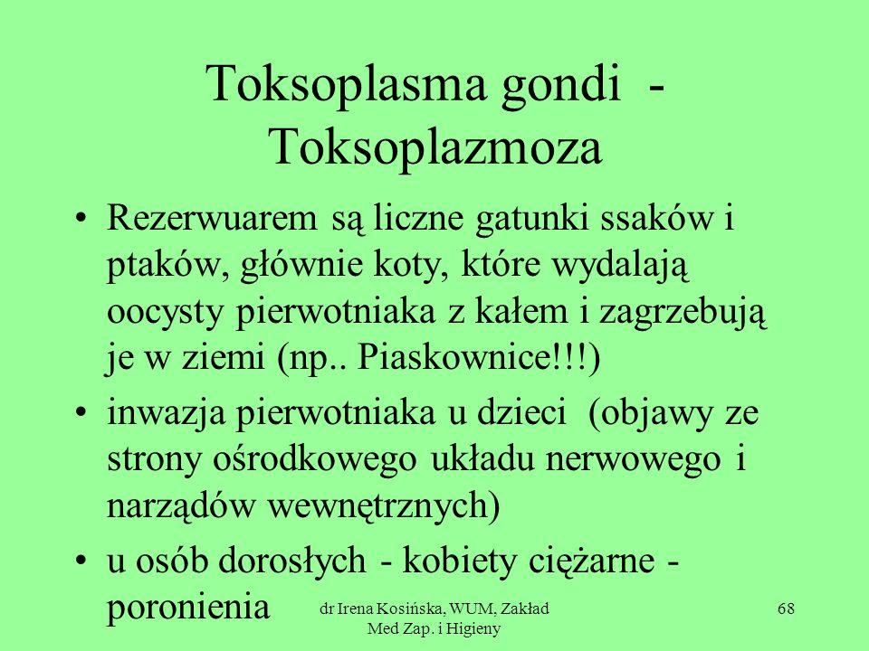 Toksoplasma gondi - Toksoplazmoza