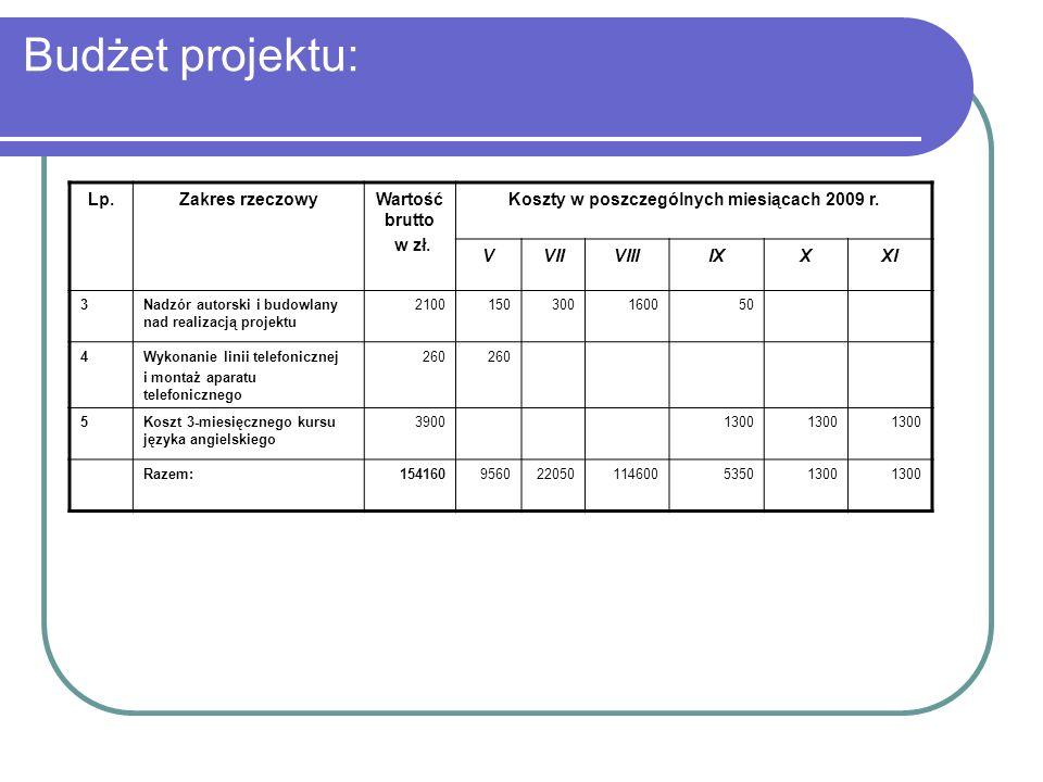 Koszty w poszczególnych miesiącach 2009 r.