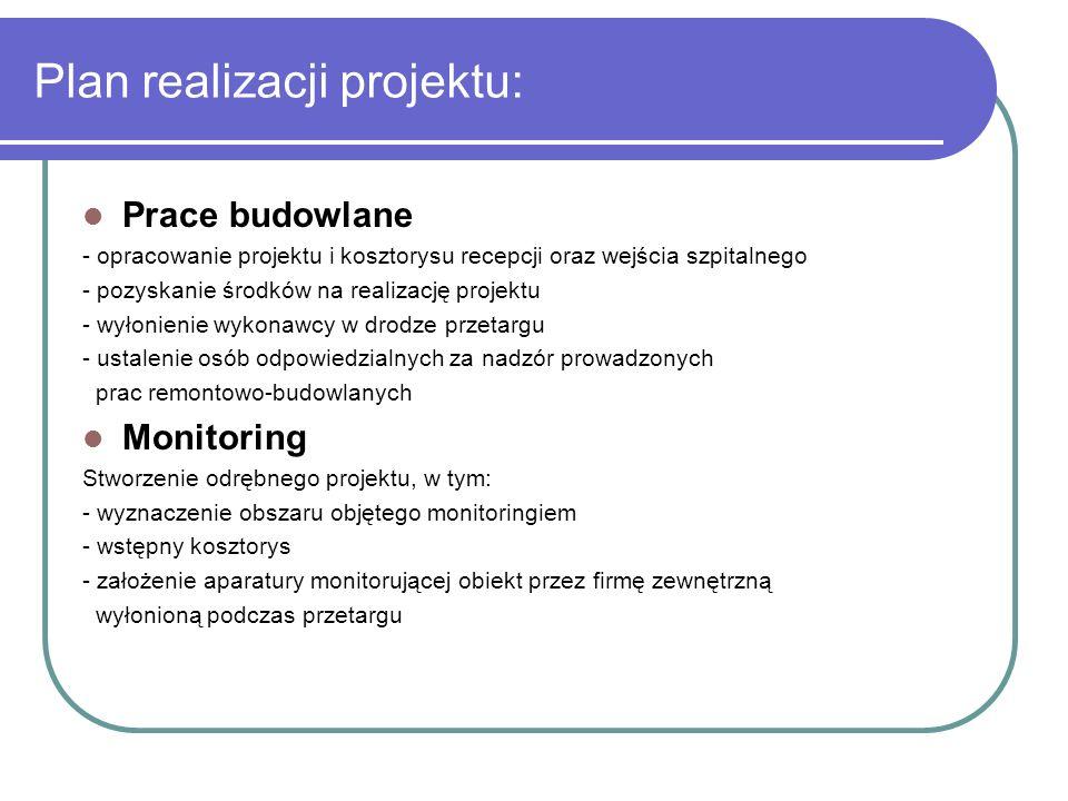 Plan realizacji projektu: