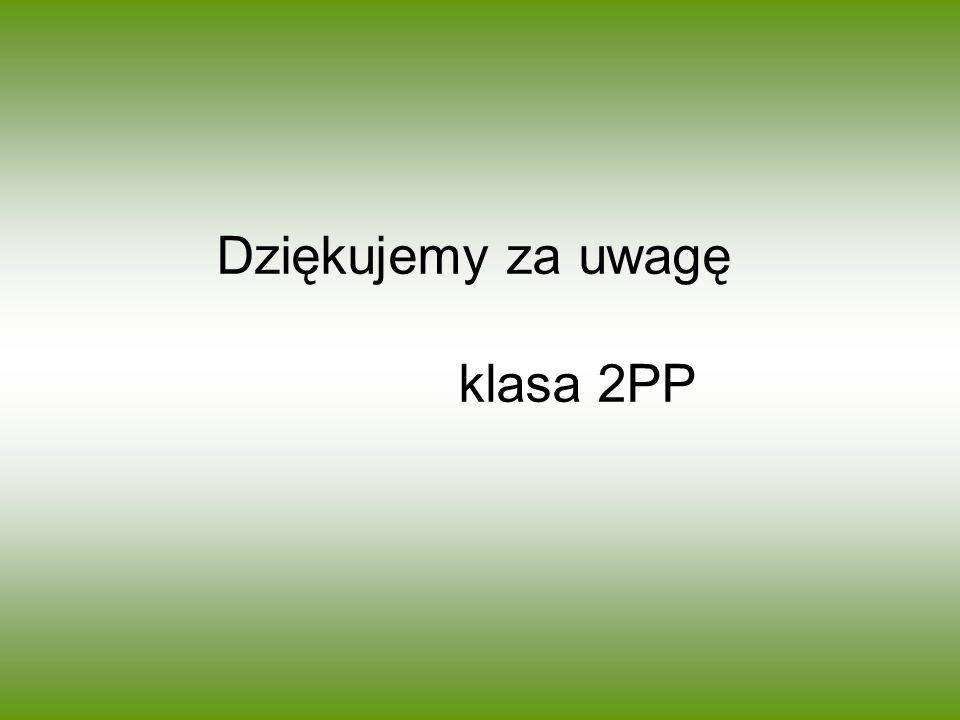 Dziękujemy za uwagę klasa 2PP