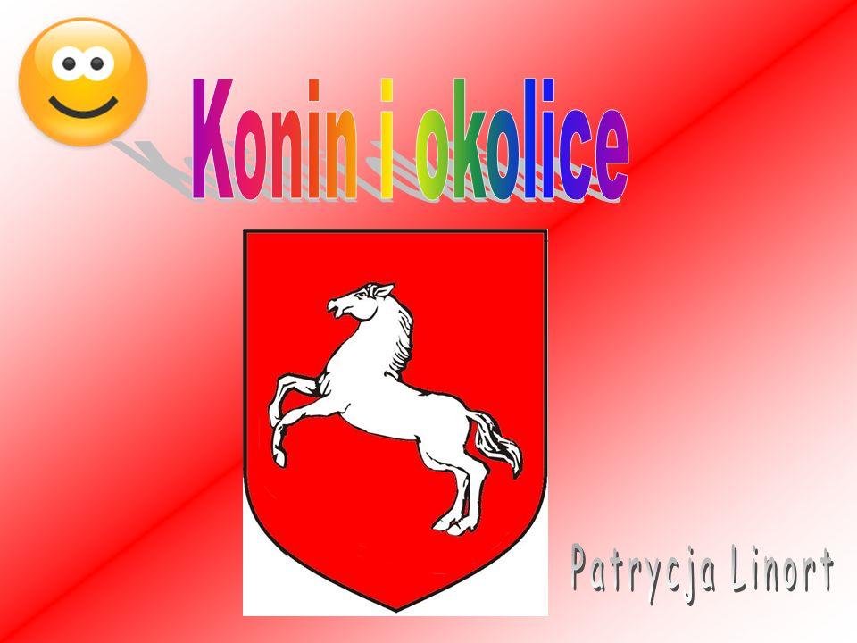 Konin i okolice Patrycja Linort