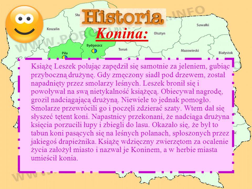 Konina: