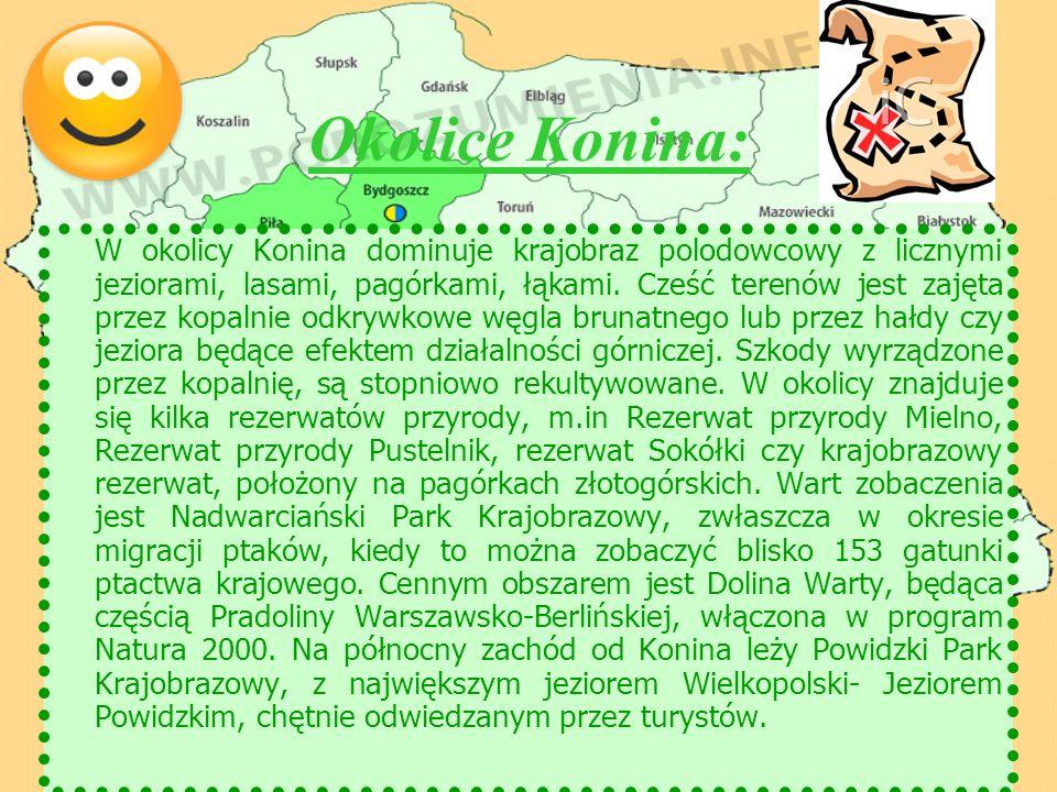 Okolice Konina: