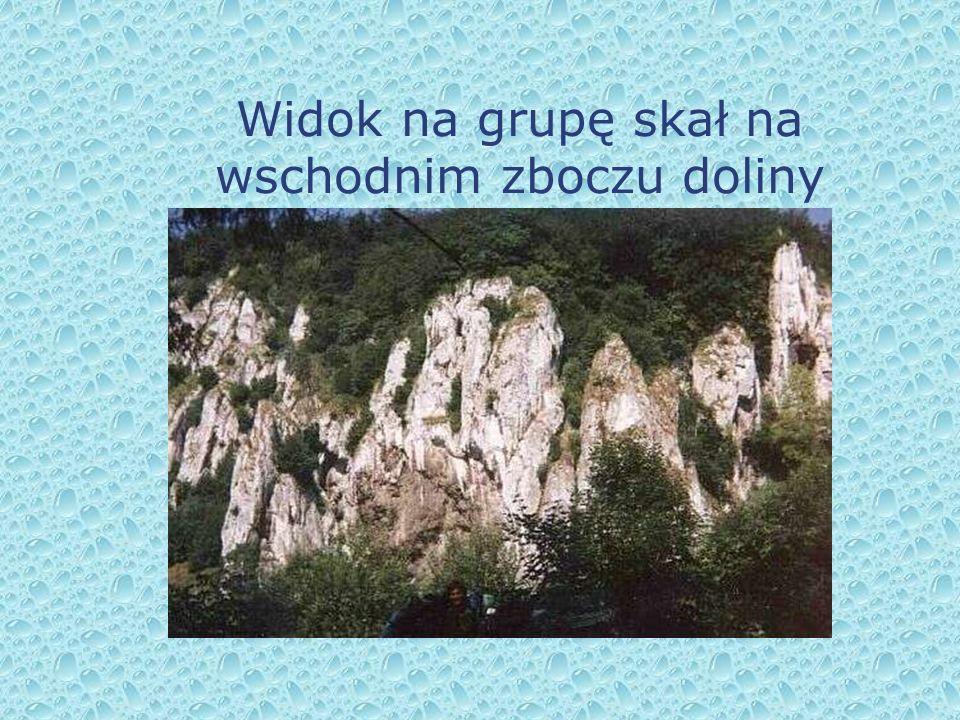 Widok na grupę skał na wschodnim zboczu doliny