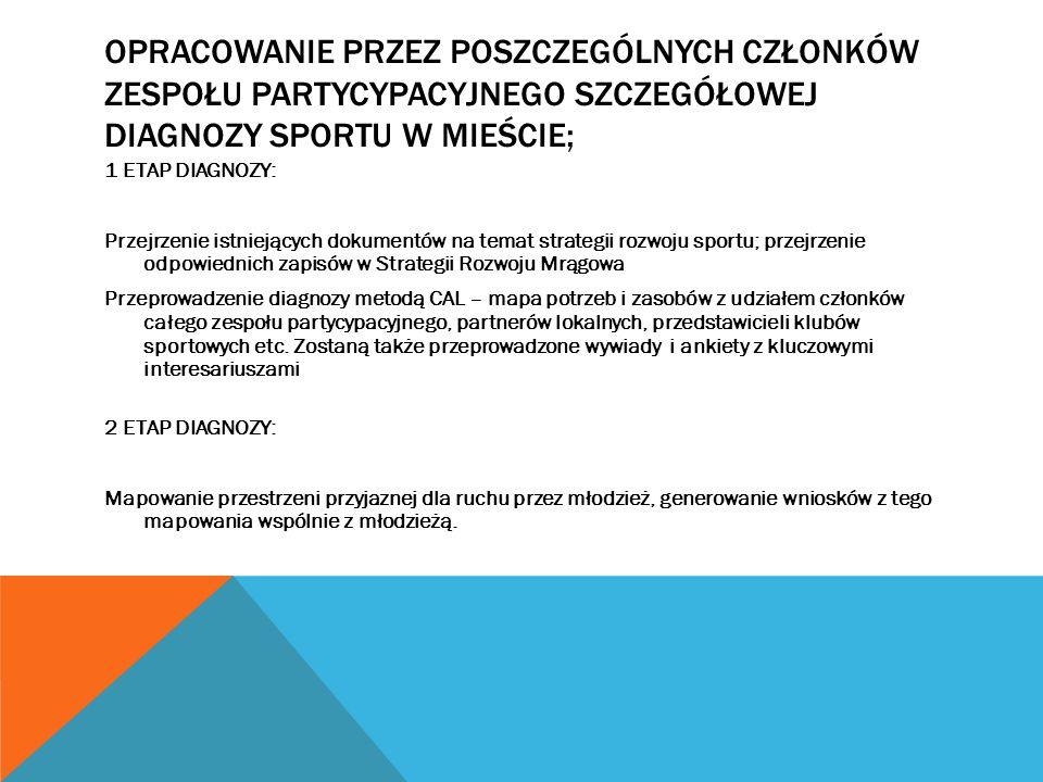 Opracowanie przez poszczególnych członków zespołu partycypacyjnego szczegółowej diagnozy sportu w mieście;