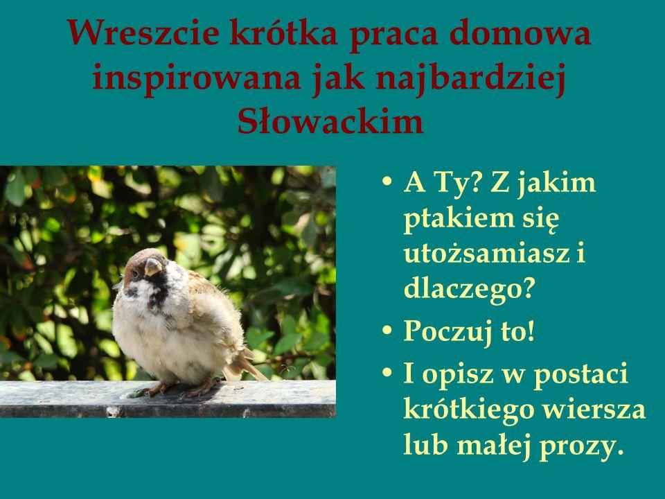 Wreszcie krótka praca domowa inspirowana jak najbardziej Słowackim