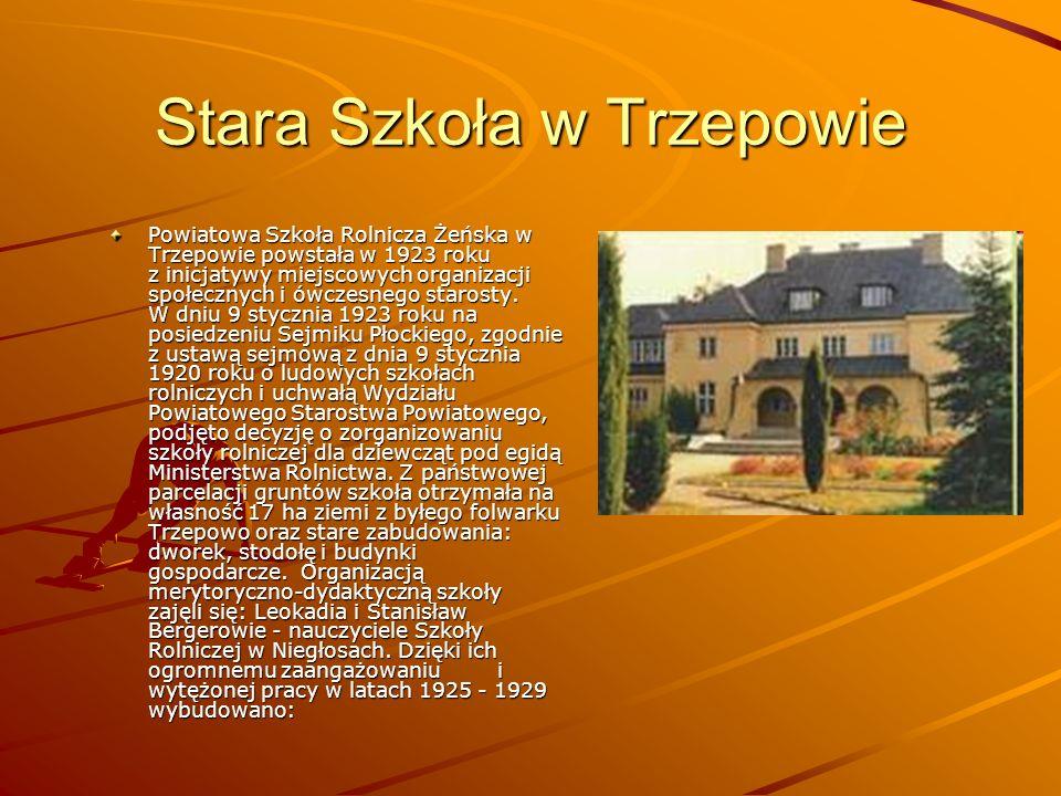 Stara Szkoła w Trzepowie