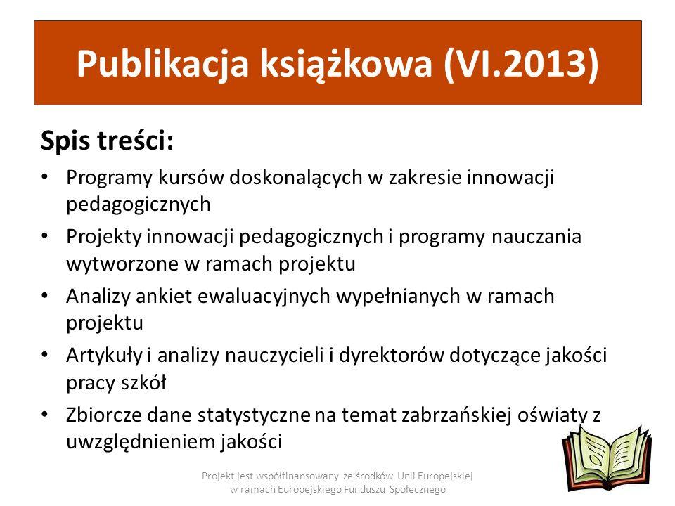 Publikacja książkowa (VI.2013)