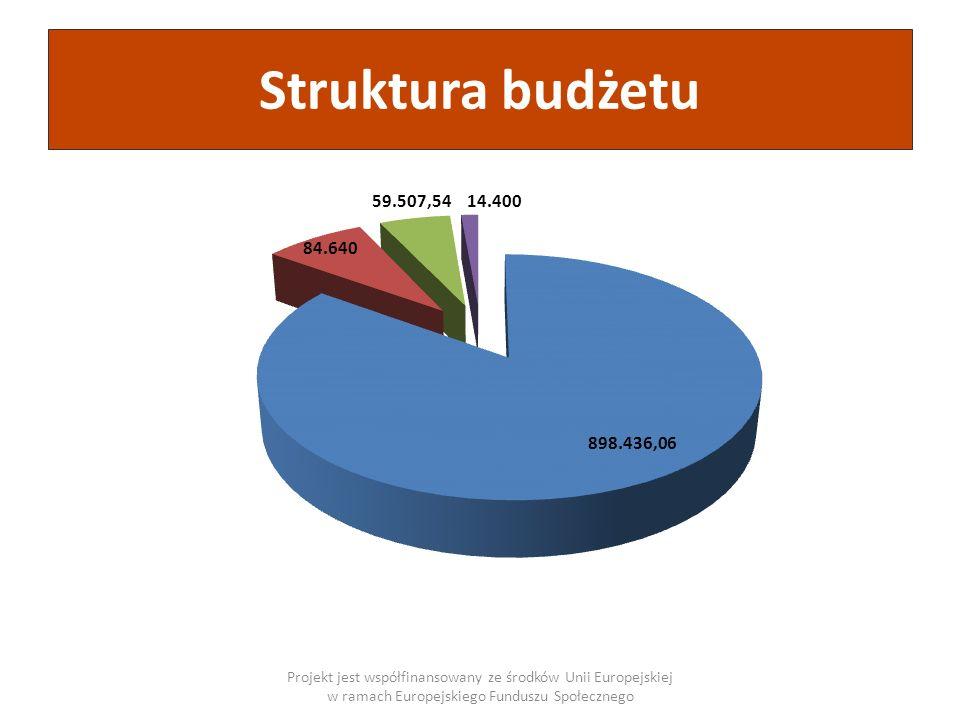 Struktura budżetuProjekt jest współfinansowany ze środków Unii Europejskiej w ramach Europejskiego Funduszu Społecznego.