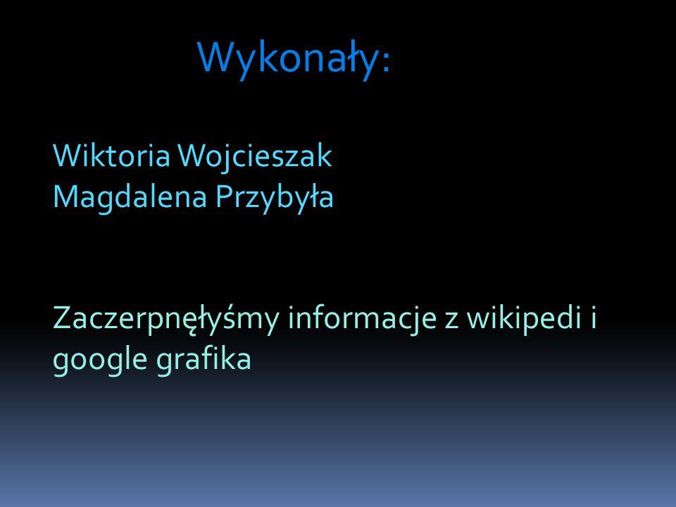 Wykonały: Wiktoria Wojcieszak Magdalena Przybyła