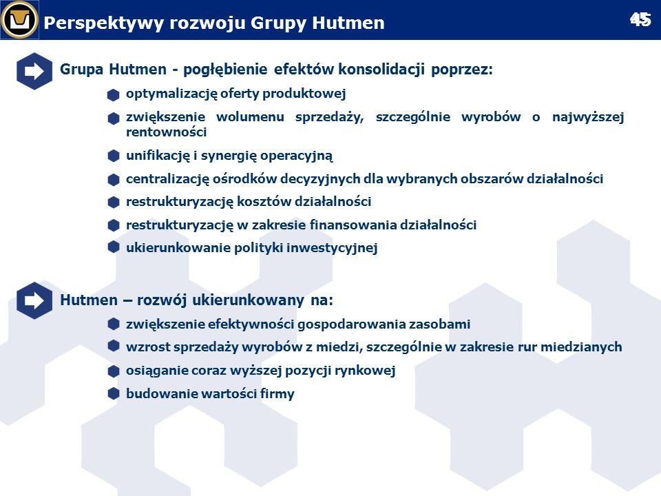 Perspektywy rozwoju Grupy Hutmen