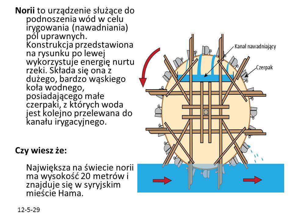 Norii to urządzenie służące do podnoszenia wód w celu irygowania (nawadniania) pól uprawnych. Konstrukcja przedstawiona na rysunku po lewej wykorzystuje energię nurtu rzeki. Składa się ona z dużego, bardzo wąskiego koła wodnego, posiadającego małe czerpaki, z których woda jest kolejno przelewana do kanału irygacyjnego.