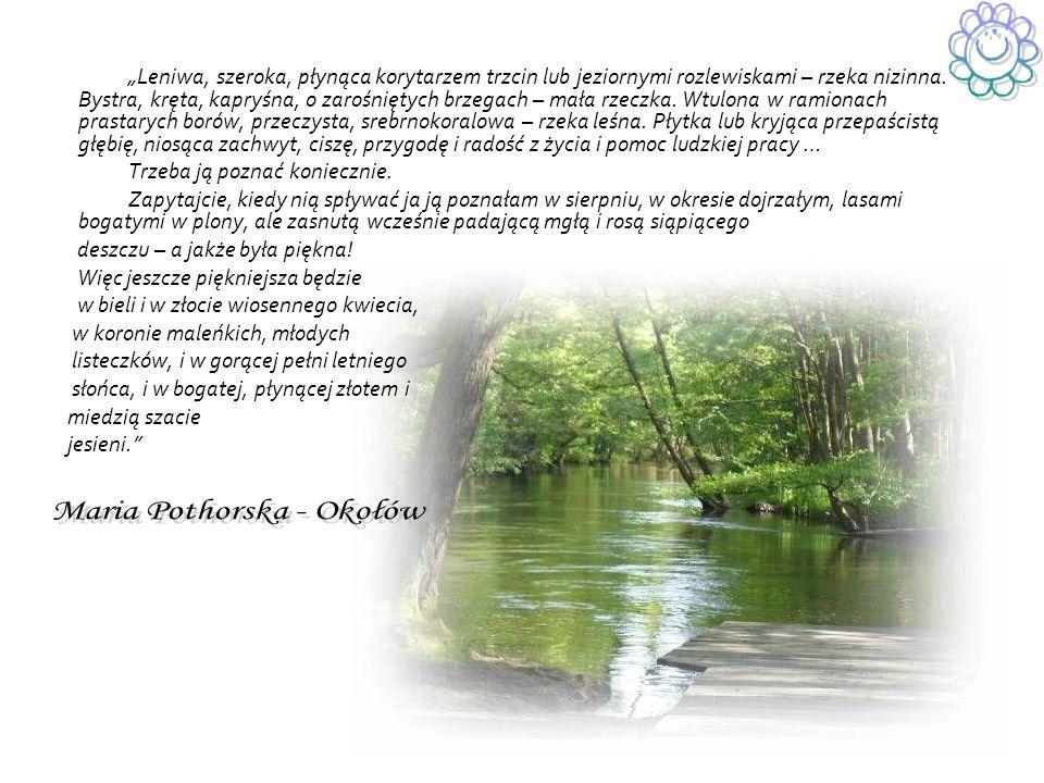 Maria Pothorska - Okołów