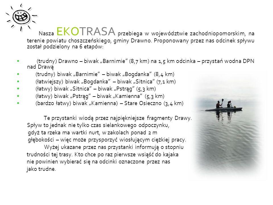 Nasza EKOTRASA przebiega w województwie zachodniopomorskim, na terenie powiatu choszczeńskiego, gminy Drawno. Proponowany przez nas odcinek spływu został podzielony na 6 etapów:
