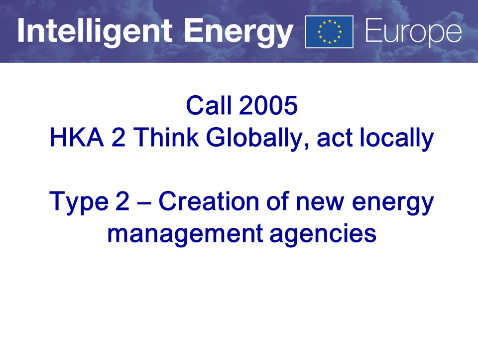 Call 2005 HKA 2 Think Globally, act locally Type 2 – Creation of new energy management agencies