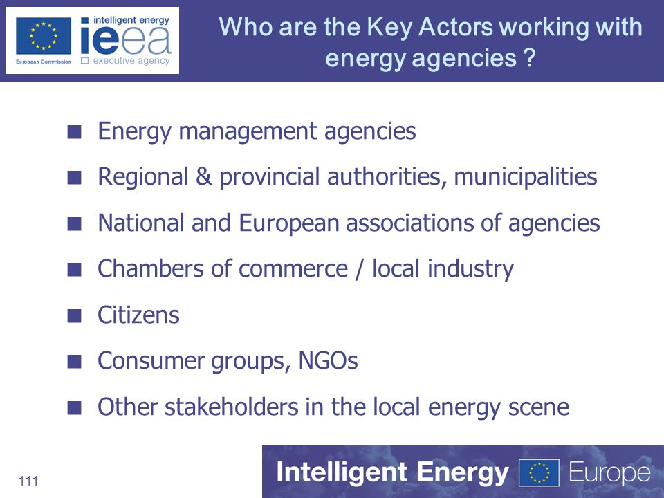 Who are the Key Actors working with energy agencies