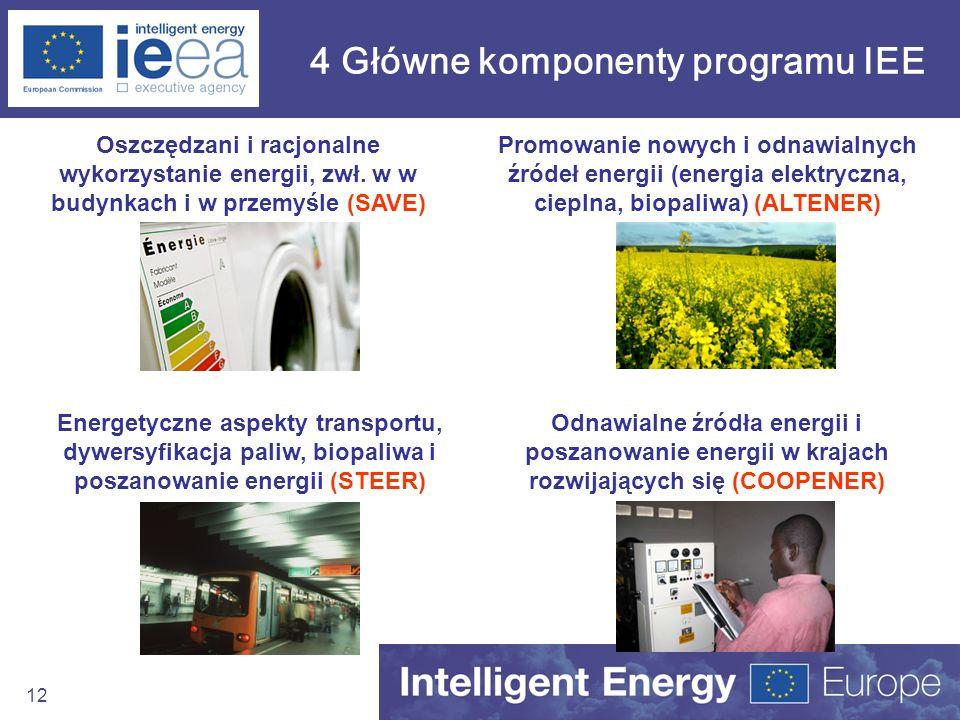 4 Główne komponenty programu IEE