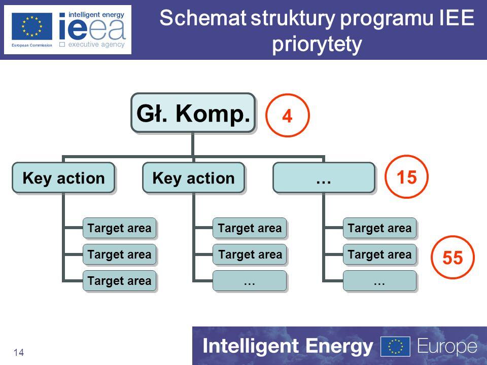 Schemat struktury programu IEE priorytety