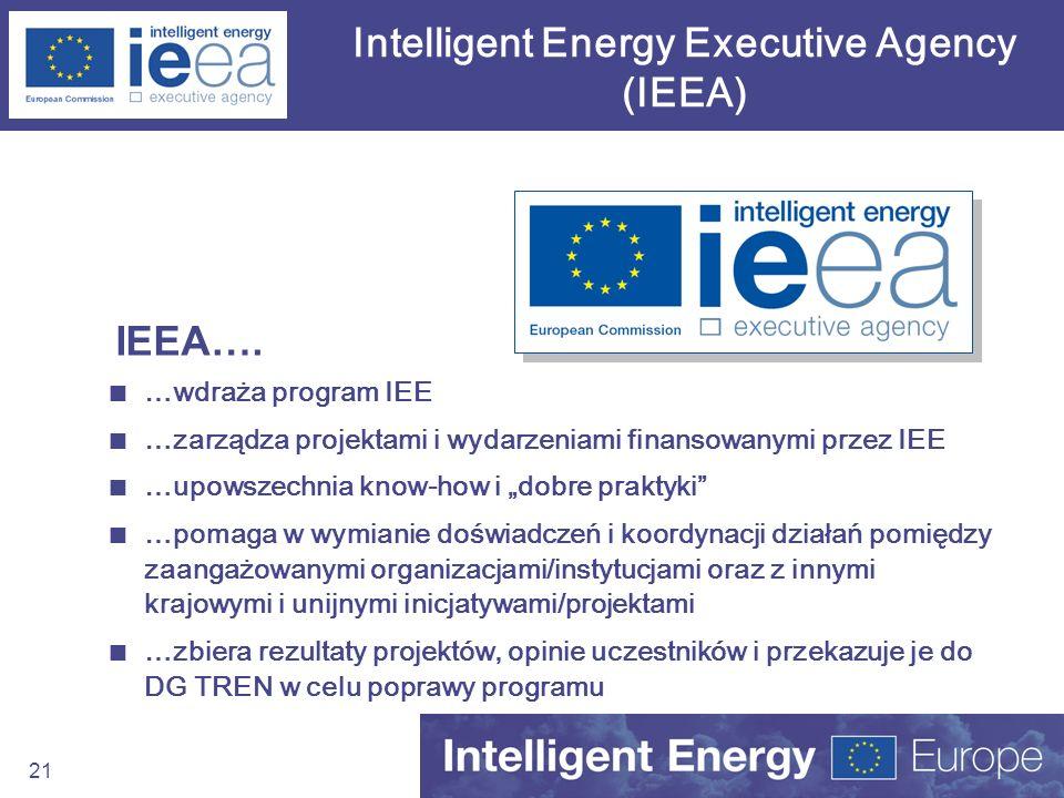 Intelligent Energy Executive Agency (IEEA)