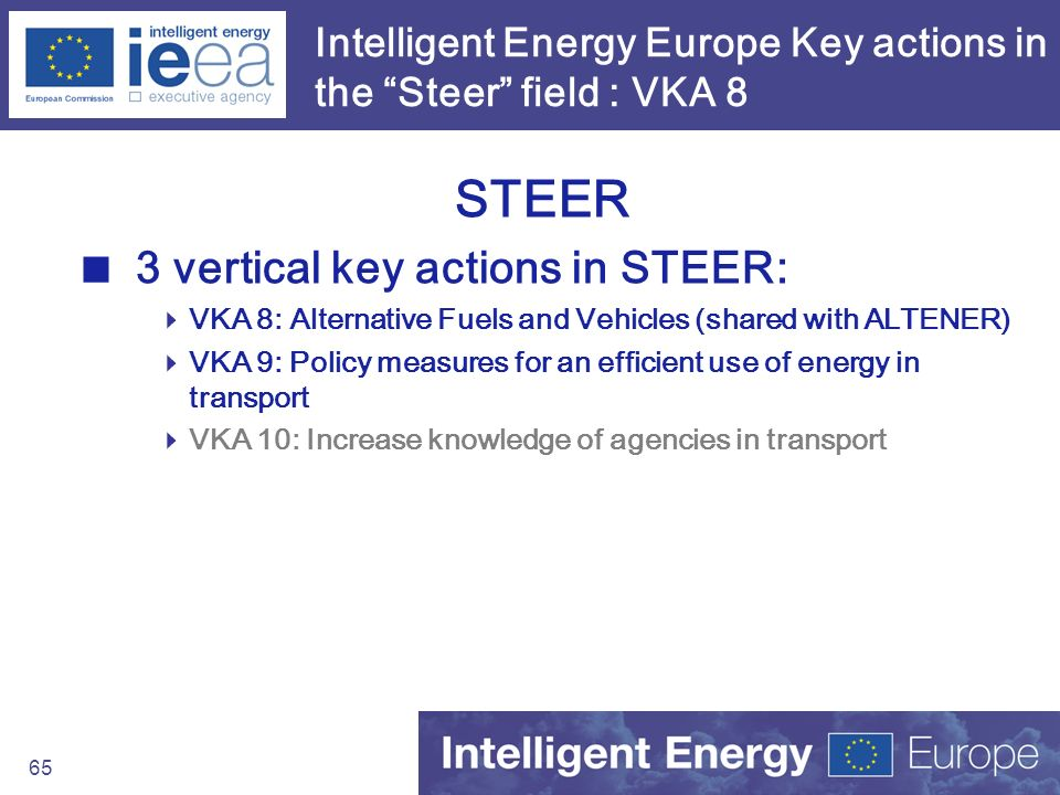 Intelligent Energy Europe Key actions in the Steer field : VKA 8