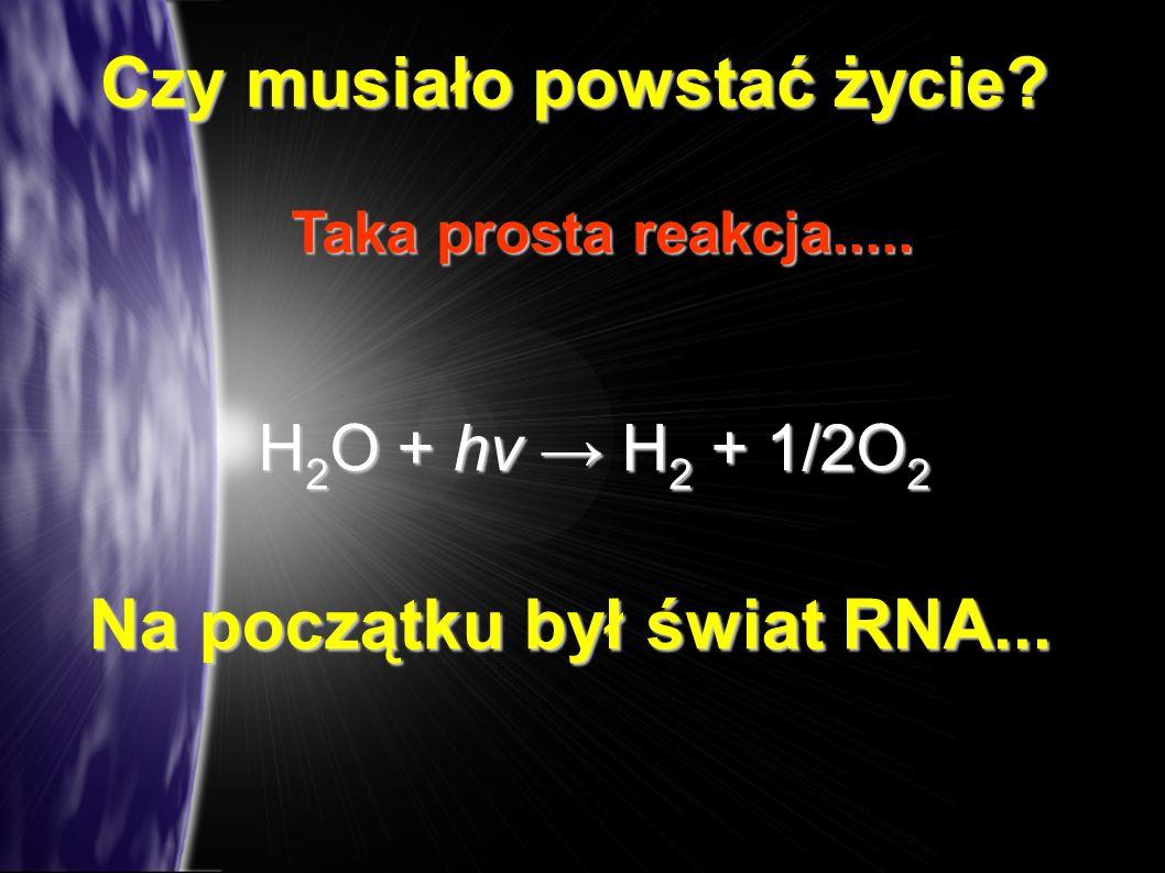 Czy musiało powstać życie Na początku był świat RNA...
