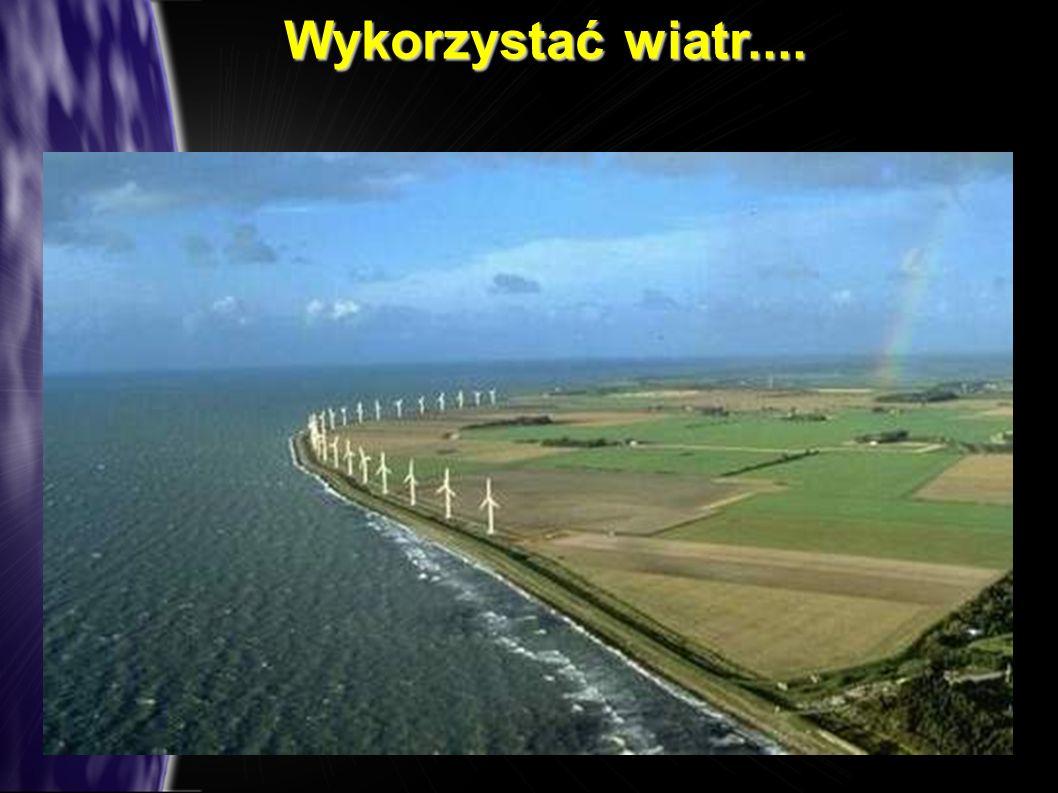 Wykorzystać wiatr....