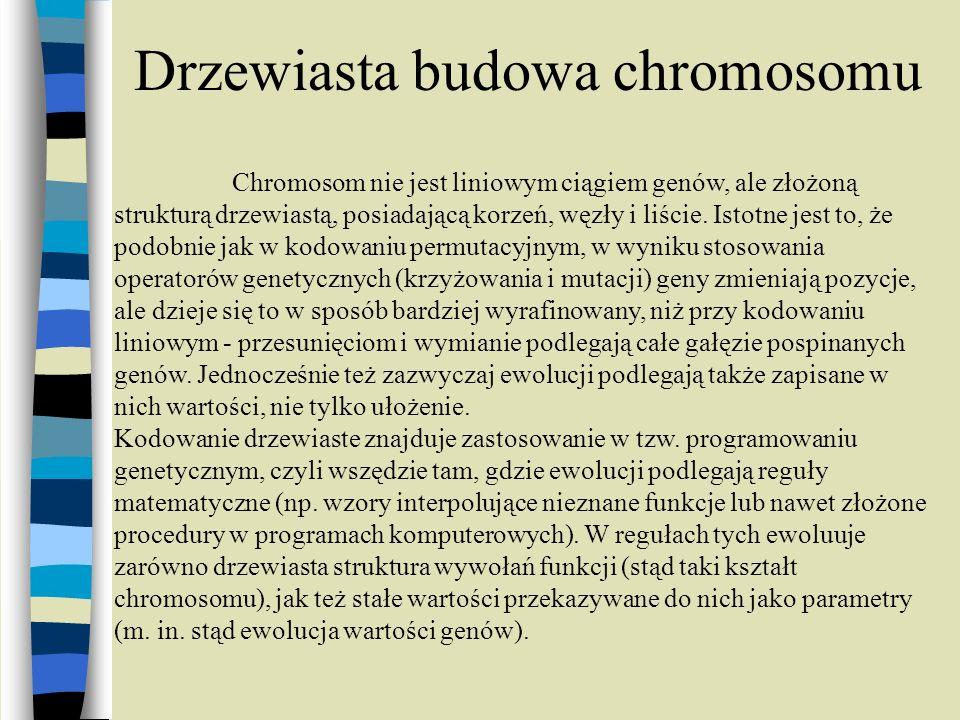 Drzewiasta budowa chromosomu