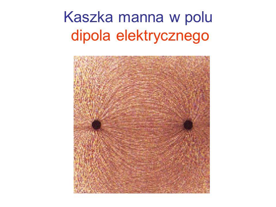 Kaszka manna w polu dipola elektrycznego