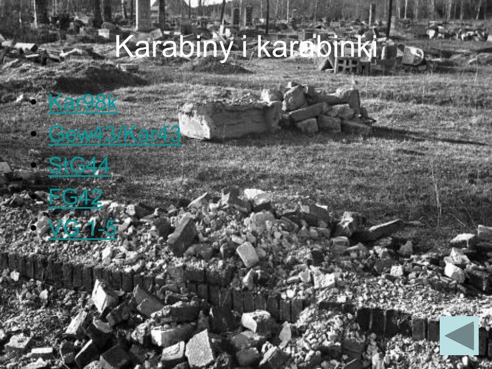 Karabiny i karabinki Kar98k Gew43/Kar43 StG44 FG42 VG 1-5