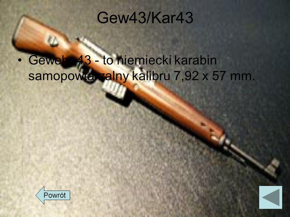 Gew43/Kar43 Gewehr 43 - to niemiecki karabin samopowtarzalny kalibru 7,92 x 57 mm. Powrót