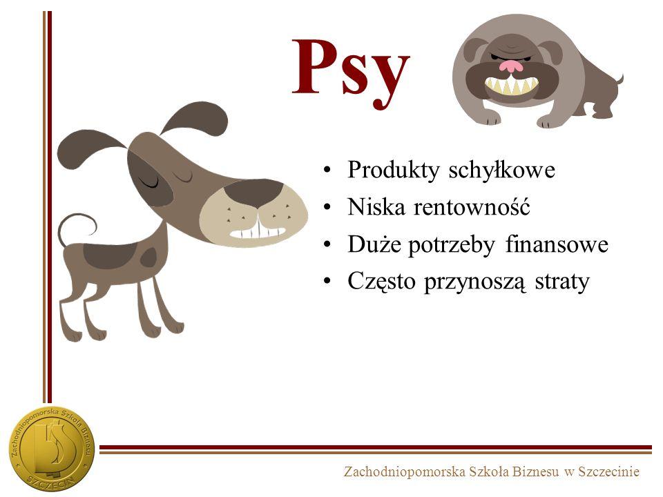 Psy Produkty schyłkowe Niska rentowność Duże potrzeby finansowe