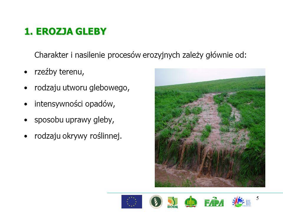 Charakter i nasilenie procesów erozyjnych zależy głównie od:
