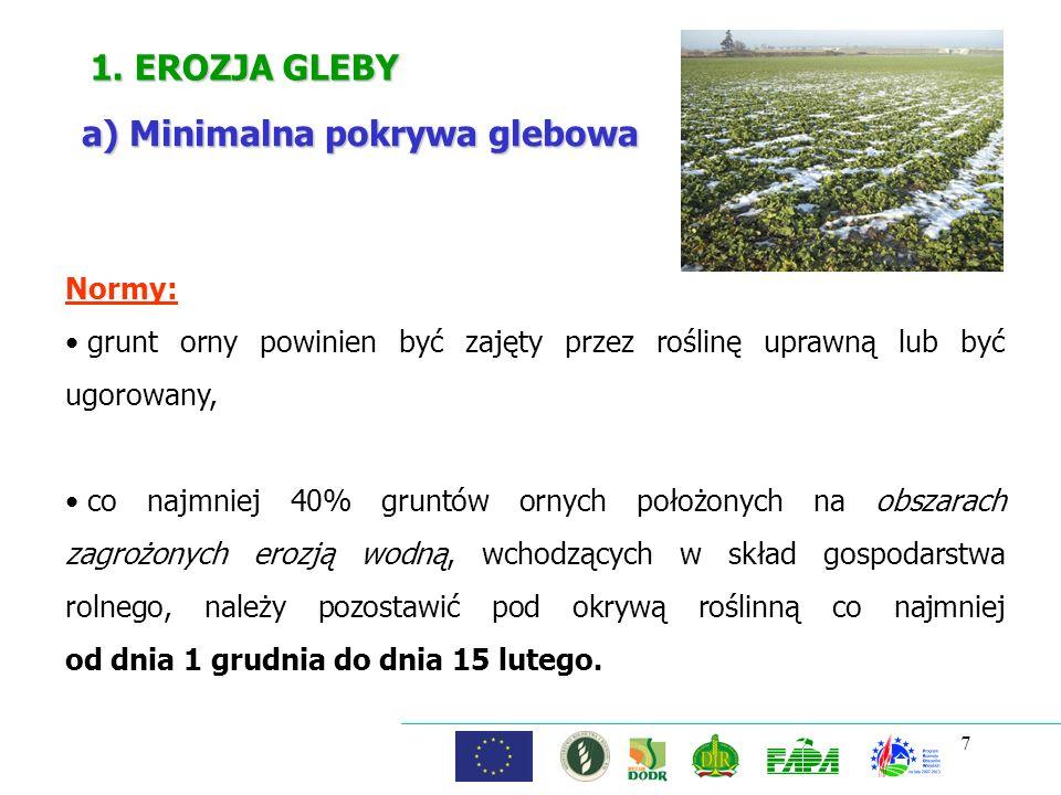 a) Minimalna pokrywa glebowa