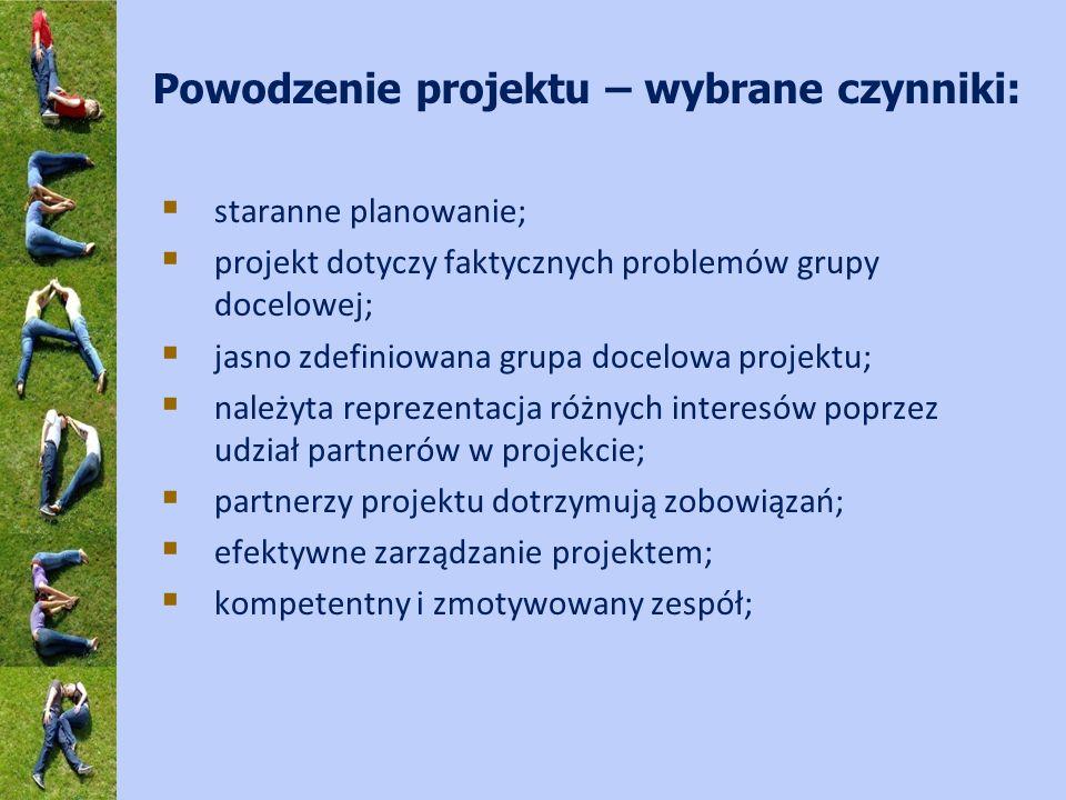 Powodzenie projektu – wybrane czynniki: