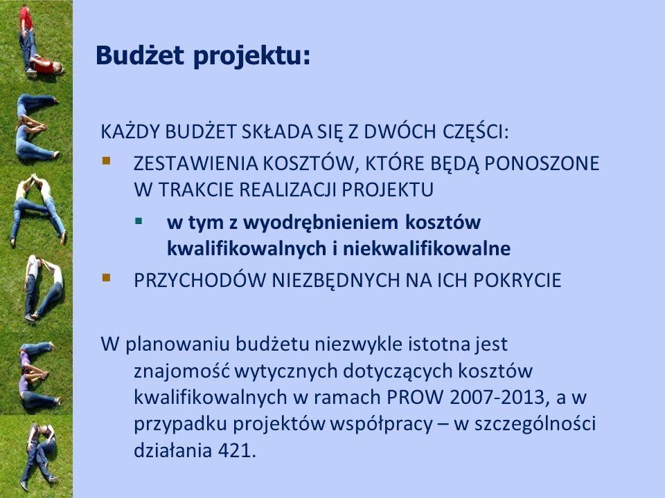 Budżet projektu: KAŻDY BUDŻET SKŁADA SIĘ Z DWÓCH CZĘŚCI: