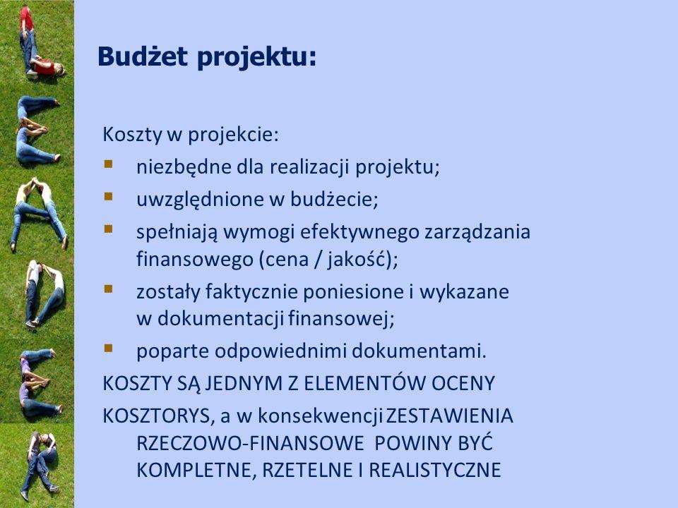 Budżet projektu: Koszty w projekcie: