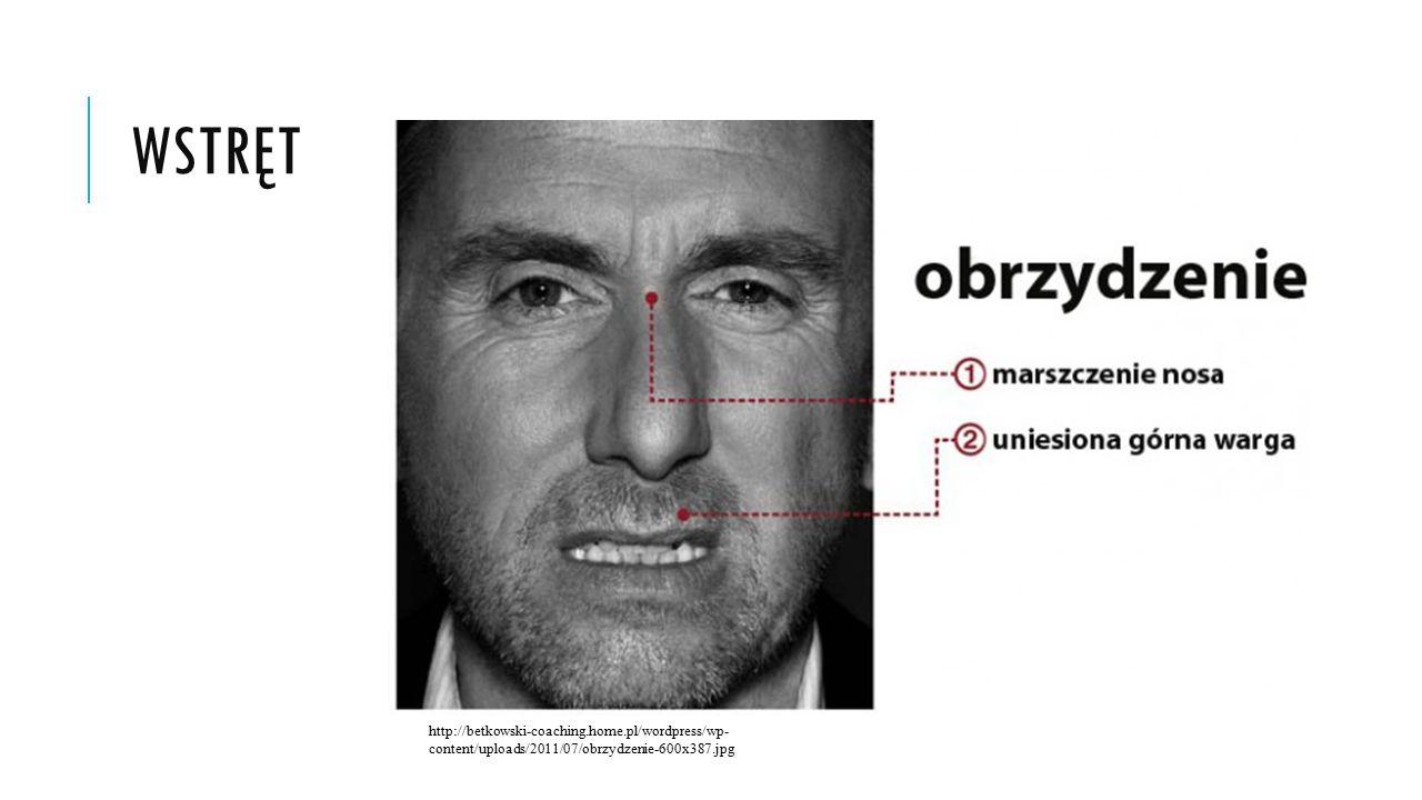 wstręt http://betkowski-coaching.home.pl/wordpress/wp-content/uploads/2011/07/obrzydzenie-600x387.jpg.