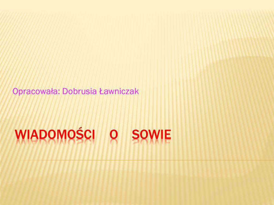 Opracowała: Dobrusia Ławniczak