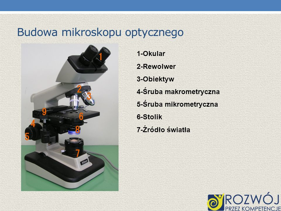 Budowa mikroskopu optycznego